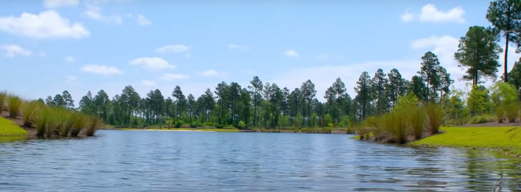 Water View at Brunswick Forest | Suzanne Polino REALTOR